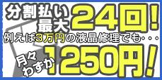 分割払い最大24回!月々わずか1250円